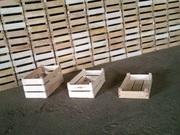 деревянные ящики из шпона(Евроящики)